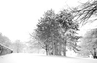 Winter at Alexandra Park. Bath Photo Prints by Beata Cosgrove Photography